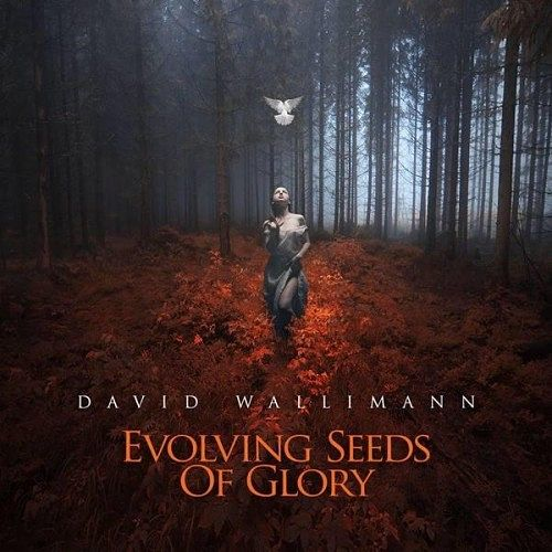David Wallimann - Evolving Seeds Of Glory (2016) 320 kbps + Scans