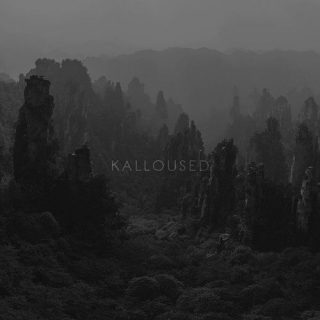 Kalloused - Damn You Believer (2016) 320 kbps
