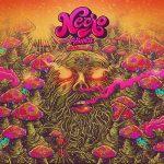 Necro – Adiante (2016) 320 kbps