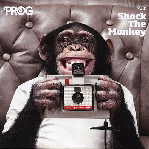 Various Artists - Prog P38: Shock The Monkey (2015) 320 kbps