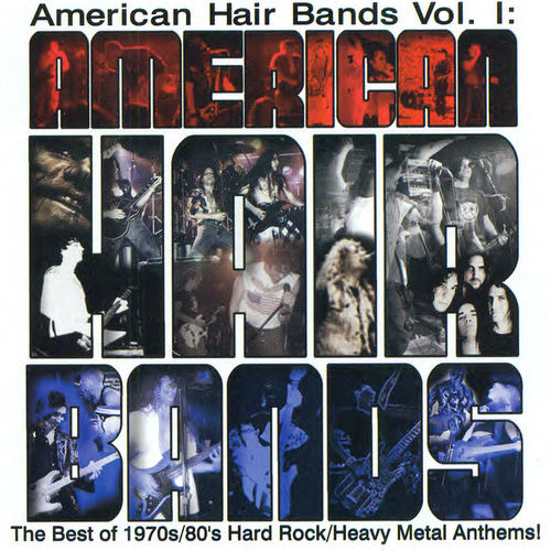 Various Artists - American Hair Bands Vol 1 (2016) 320 kbps