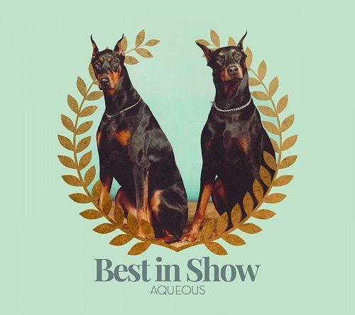 Aqueous - Best in Show (2016) 320 kbps