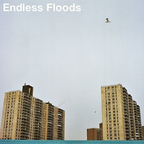 Endless Floods - II (2017) 320 kbps