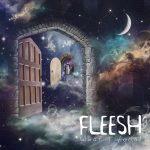 Fleesh – What I Found (2017) 320 kbps
