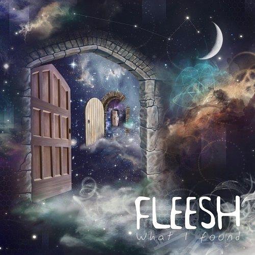 Fleesh - What I Found (2017) 320 kbps