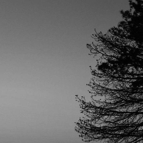 Køldun - This Winter Grayness (2017) 320 kbps