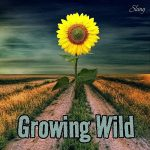 Slang – Growing Wild (2017) 320 kbps