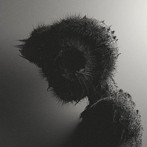 The Drowned God - Moonbearer (2017) 320 kbps