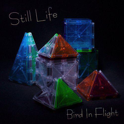 Bird In Flight - Still Life (2017) 320 kbps