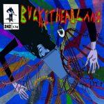 Buckethead – Pike 242: Hamdens Hollow (2016) 320 kbps
