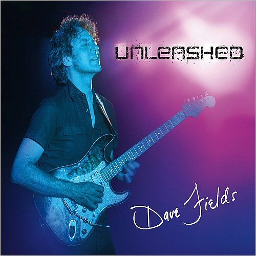 Dave Fields - Unleashed (2017) 320 kbps