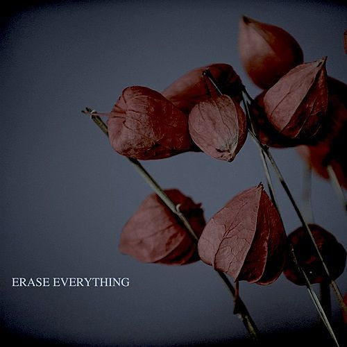 Jake Yencik - Erase Everything (2017) 320 kbps
