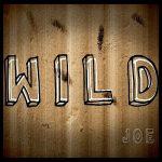 Joe – Wild (2017) 320 kbps