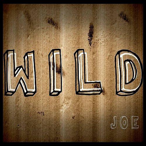 Joe - Wild (2017) 320 kbps