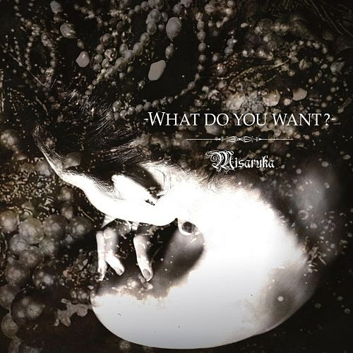Misaruka - What Do You Want? (2017) 320 kbps