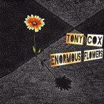 Tony Cox – Enormous Flowers (2017) 320 kbps