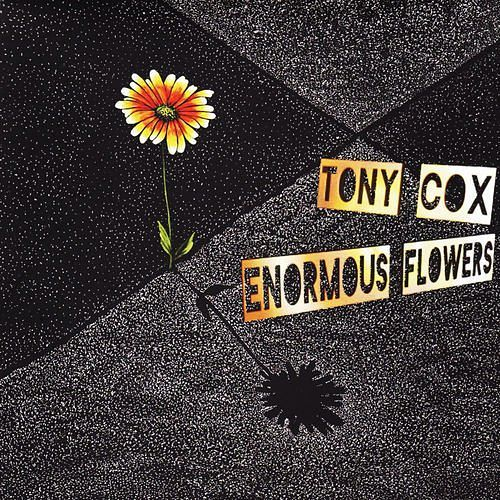 Tony Cox - Enormous Flowers (2017) 320 kbps