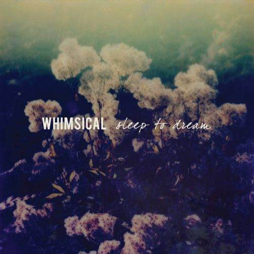 Whimsical - Sleep to Dream (2017) 320 kbps