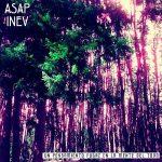 Asap Inev – Un Pensamiento Fugaz En La Mente Del Todo (2017) 320 kbps