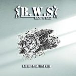 B.W.S – Licht & Schatten (2017) 320 kbps