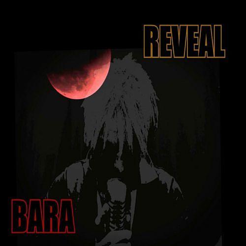Bara - Reveal (2017) 320 kbps