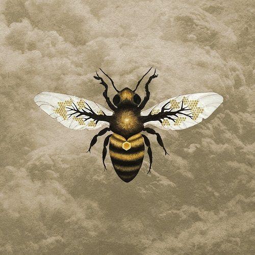 Bees Made Honey In The Vein Tree - Medicine (2017) 320 kbps