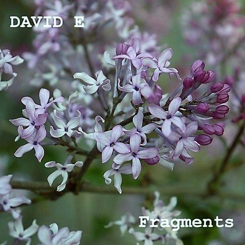 David E - Fragments (2017)