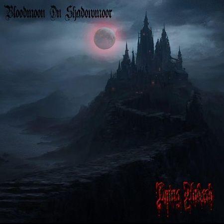 Dying Undead - Bloodmoon On Shadowmoor (2017) 320 kbps