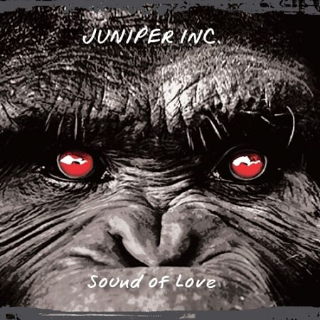 Juniper Inc. - Sound of Love (2017) 320 kbps