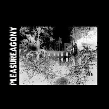 Pleasureagony - Pleasureagony (2017) 320 kbps