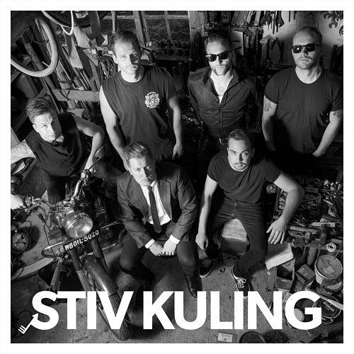 Stiv Kuling - Stiv Kuling (2017) 320 kbps