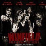 Winfield – Rock'n'roll Ist Krieg (2017) 320 kbps