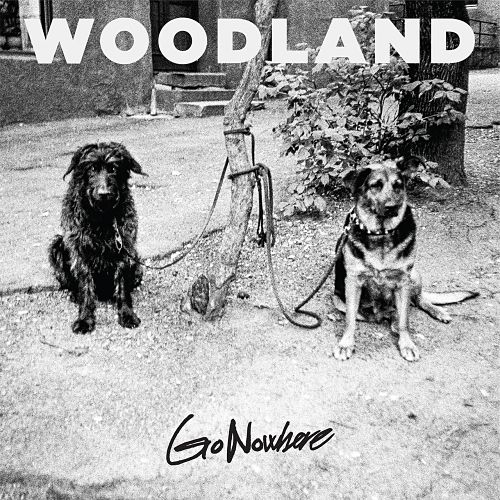 Woodland - Go Nowhere (2017) 320 kbps