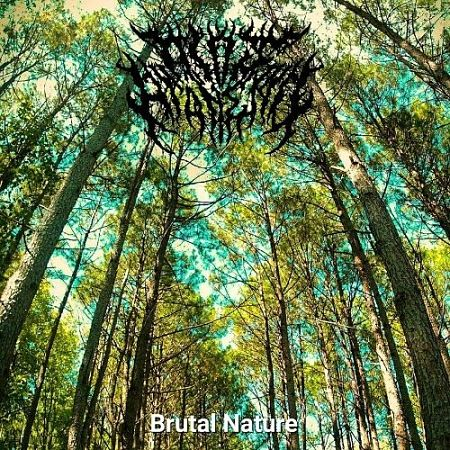 All Is At An End - Brutal Nature (2017) 320 kbps