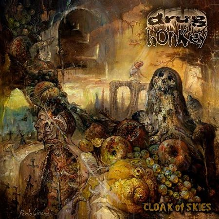 Drug Honkey - Cloak Of Skies (2017) 320 kbps