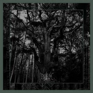 Enisum - Seasons Of Desolation (2017) 320 kbps
