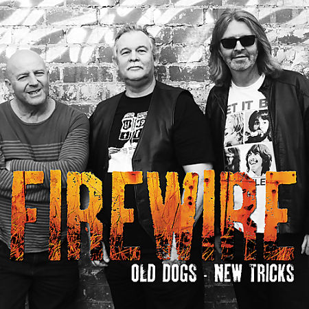 Firewire - Old Dogs New Tricks (EP) (2016) 320 kbps
