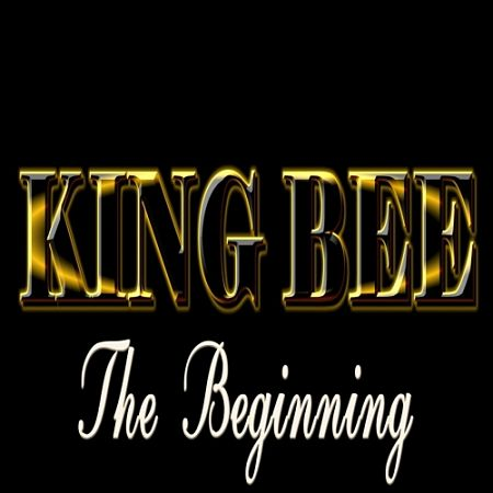 King Bee - The Beginning (2017) 320 kbps