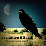 Levitation B Band – Moonlight In Your Pocket (2017) 320 kbps