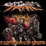 Organ Trail - A Gross Misuse of Anatomy (2017) 320 kbps