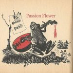 Time Toad – Passion Flower (2017) 320 kbps