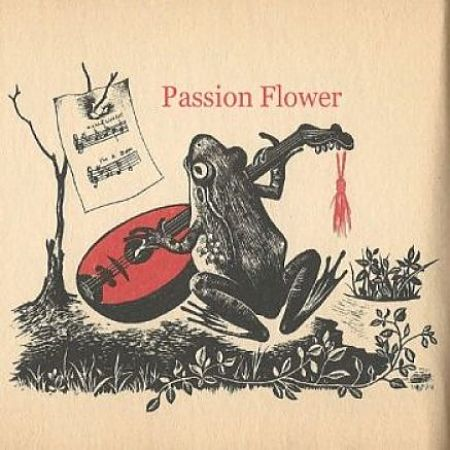 Time Toad - Passion Flower (2017) 320 kbps