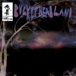 Buckethead - Pike 148: Invisable Forest (2015) 320 kbps