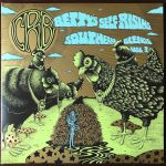 Chris Robinson Brotherhood – Betty's Self-Rising Southern Blends, Vol. 3 (Live) (2017) 320 kbps