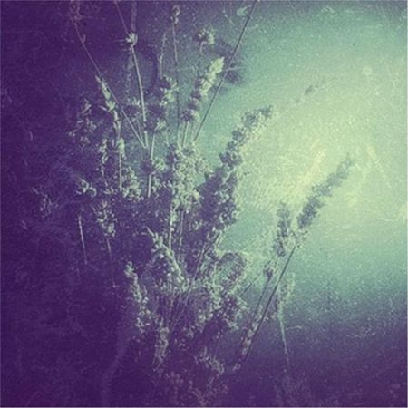 Oceans Are Zeroes - Oceans Are Zeroes (2017) 320 kbps
