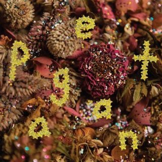 PWR BTTM - Pageant (2017) 320 kbps