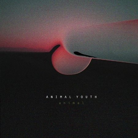 Animal Youth - Animal (2017) 320 kbps