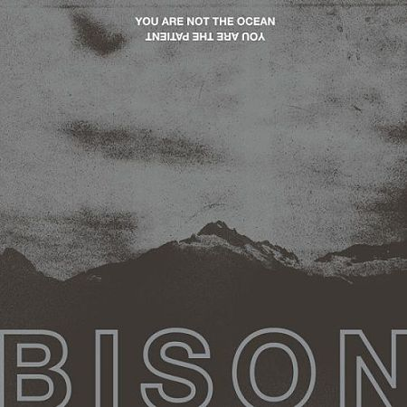 Bison (Bison B.C.) - You Are Not The Ocean You Are The Patient (2017)