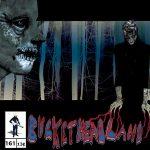 Buckethead – Pike 161: Bats in the Lite Brite (2015) 320 kbps