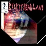 Buckethead – Pike 172: Crest of the Hill (2015) 320 kbps
